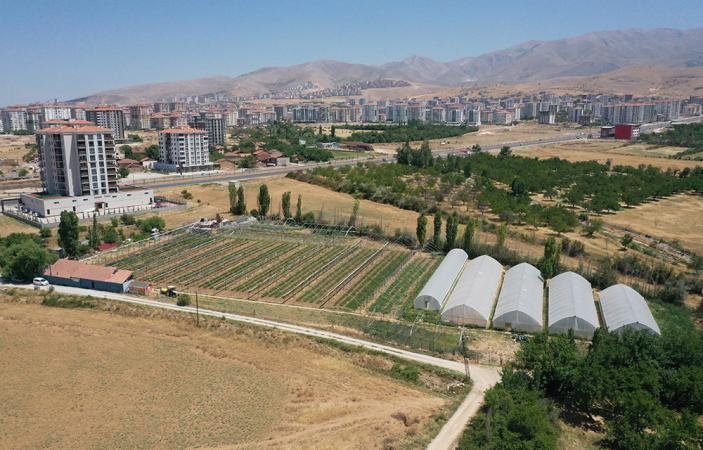 Tarımsal Üretim ve AR-GE Sahası